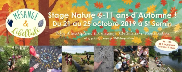 stage nature automne 2019