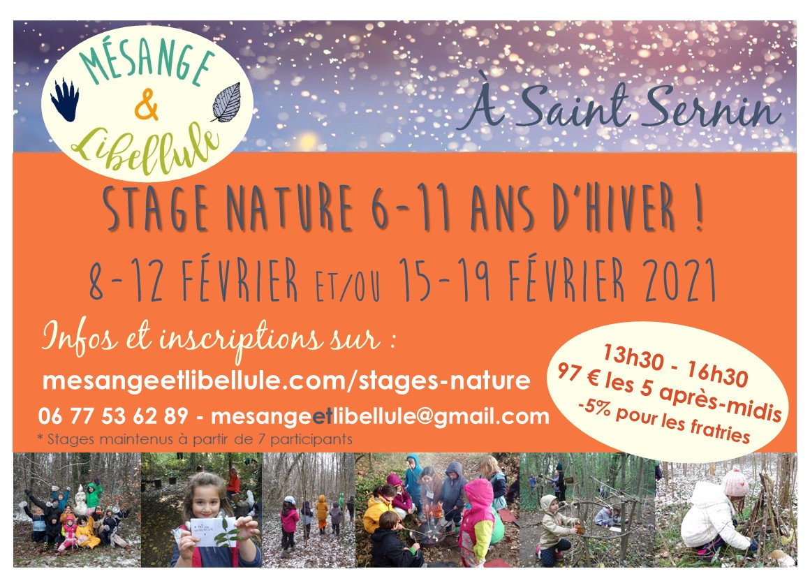 stage hiver 2021